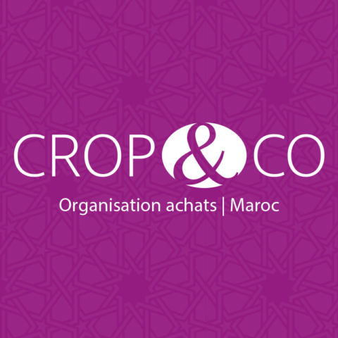Projet cropandco sitemaroc logo optimise 480x480 - Projets